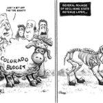 budget-shear