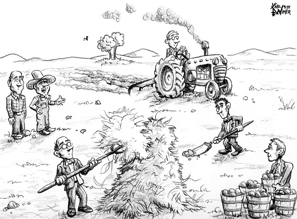bt 9-15 biz farmers