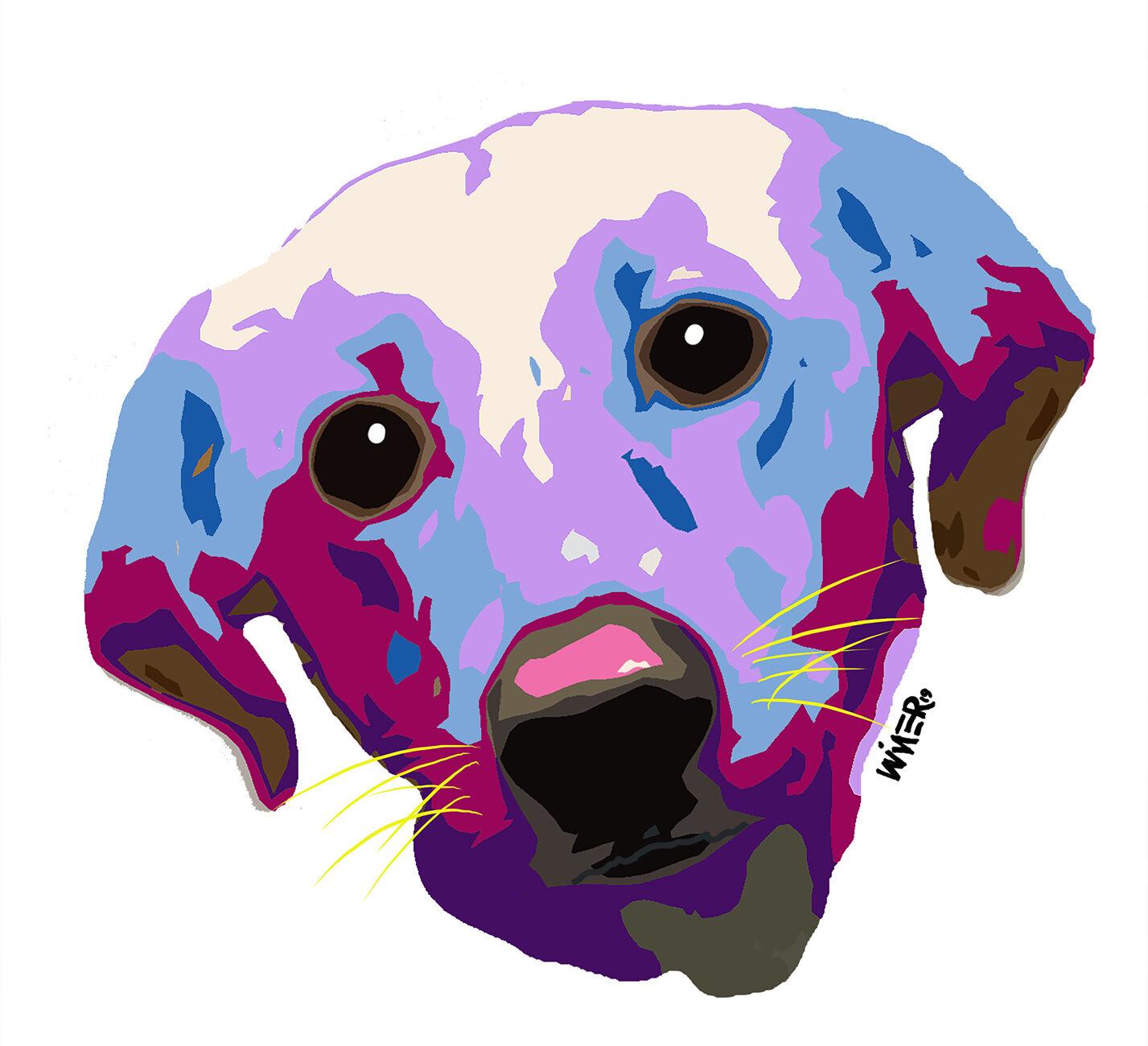 Dog Face Illustration Artwork