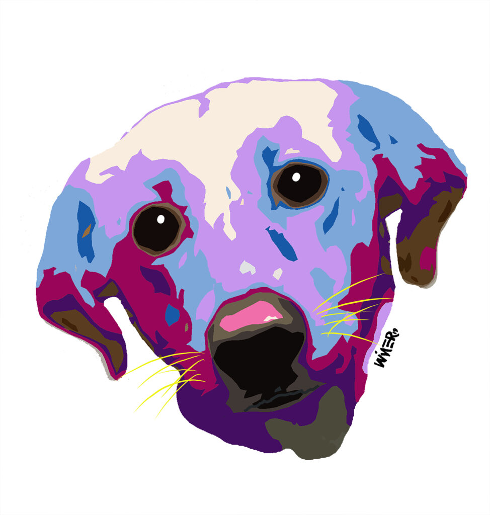 Dog Face Illustration Artwork